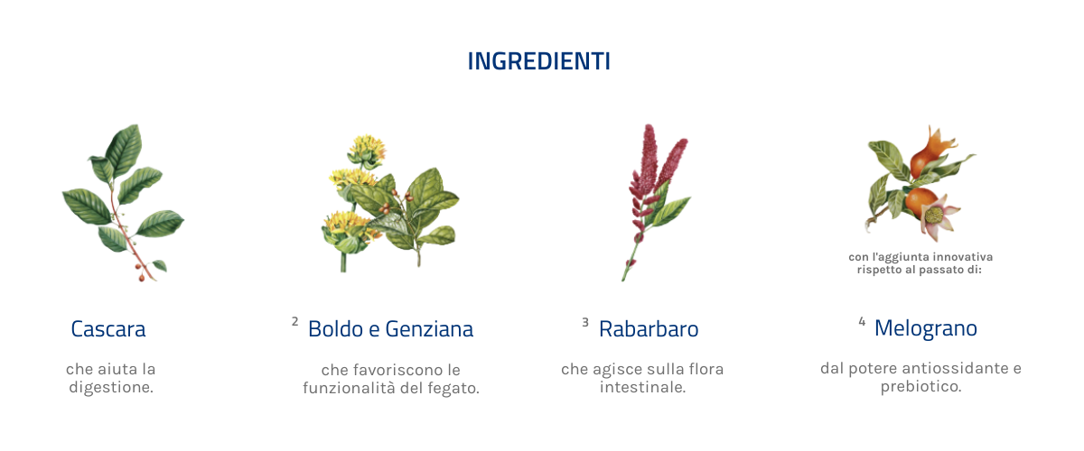 ingredienti amaro